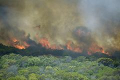 Runaway coastal bush fire. Very hot coastal bush fire burning out of control Royalty Free Stock Images