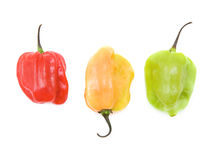 Very hot small peppers Stock Photo