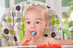 Very hungry baby Royalty Free Stock Image