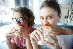 Very hungry. Two hungry girls biting hamburgers during lunch break in fast food cafe Royalty Free Stock Photography