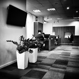 In a very important office. Artistic look in black and white. Royalty Free Stock Photography