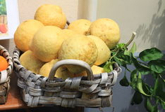 Very large lemons with green leaves Stock Photography