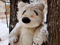 Large children`s toy tree - bear or squirrel. A very large soft toy for a tree - a bear or a squirrel stock photography
