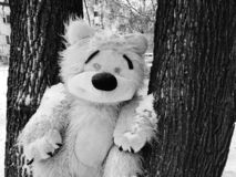 Large children`s toy tree - bear or squirrel. A very large soft toy for a tree - a bear or a squirrel stock images