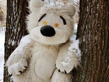 Large children`s toy tree - bear or squirrel. A very large soft toy for a tree - a bear or a squirrel stock photo