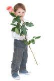 Very little gentleman holding a rose Stock Photos