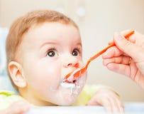Very little kid eats fresh tasty nutritious curds on highchair Royalty Free Stock Photos