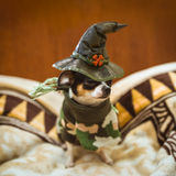 A very little puppy  sitting sadly and wearing a witch's hat Royalty Free Stock Photos