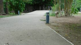 Lonely park`s way stock footage