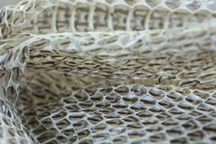 Very Long White Shedding Snake Skin on Wooden Floor Royalty Free Stock Photography