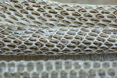 Very Long White Shedding Snake Skin on Wooden Floor Royalty Free Stock Photo