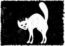 Very malicious cat. Stock Photography