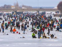 Very many winter anglers on ice. Very many winter anglers on the harbor ice channel, Liepaja, Latvia, 2009 Royalty Free Stock Photography