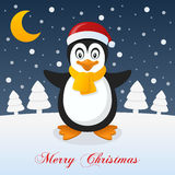 A Very Merry Christmas Night - Penguin Royalty Free Stock Photo