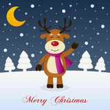 A Very Merry Christmas Night - Reindeer Stock Image