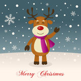 A Very Merry Christmas with a Reindeer Stock Photography