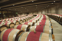 Wine cellar of Opus One, Nappa Valley Royalty Free Stock Photos