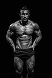 Very muscular handsome athletic man Royalty Free Stock Image