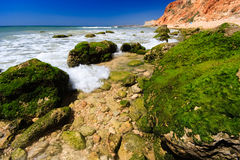 Very nice beach Royalty Free Stock Photo