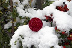 Colorful glowing christmas ball on the snow Royalty Free Stock Image