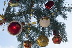 Colorful glowing christmas decorations in the sunshine Royalty Free Stock Image