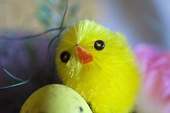 Nice colorful easter decorations close up Royalty Free Stock Photo