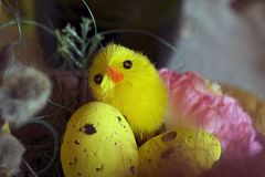 Nice colorful easter decorations close up Royalty Free Stock Photos