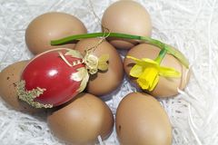 Nice colorful easter eggs with flower Royalty Free Stock Images