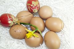 Nice colorful easter eggs with flower Stock Photos