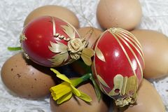 Nice colorful easter eggs with flower stock image