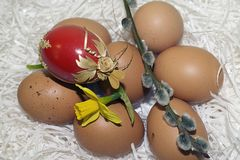 Nice colorful easter eggs with flower Royalty Free Stock Photo
