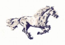 Freehand horse head pencil drawing Stock Photos