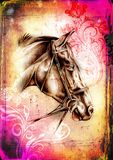 Freehand horse head pencil drawing. A very nice freehand horse head pencil drawing Stock Images