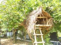 Beautiful architecture house of sri lanka stock photos