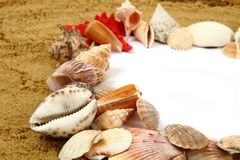 Sand frame with the shells Royalty Free Stock Images