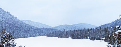 Frozen lake during the winter Stock Image
