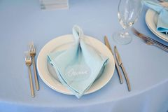 Very nicely decorated wedding plate. A very nicely decorated wedding table with plates and serviettes Stock Images