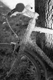 Very old bike Stock Photo