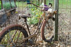 Old bike in the park. Very old bike in the park Royalty Free Stock Photography