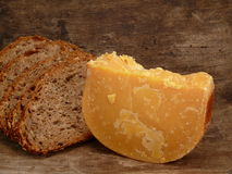 Very old cheese Royalty Free Stock Image