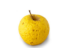 Very old golden apple. Over white background Stock Photo