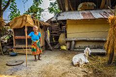 Very old nepalese woman and her goat in the backyard of her hous Royalty Free Stock Photography