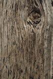 Very old oak board Stock Photo