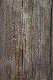 Very old oak board Royalty Free Stock Photo