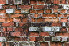 Very old red brick wall Royalty Free Stock Photo