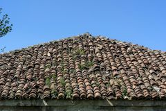 Very old red tile on old house roof in nature Stock Images