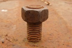 A very old rustic rusted screw Royalty Free Stock Images