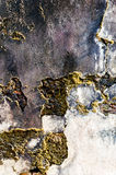 Very old rusty cement wall for background Royalty Free Stock Photos