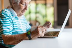Free Very Old Senior Woman Using A Computer Royalty Free Stock Photo - 138549905