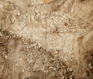 Very old wall Stock Image